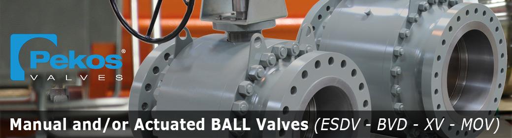 Slide PEKOS Ball Valves